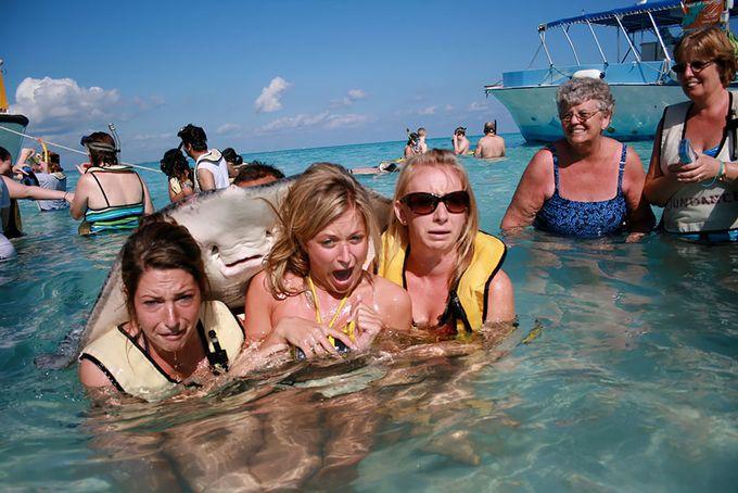 photobomb mantarraya detrás de turistas en el mar