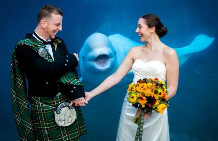 photobomb boda pareja escocesa con delfín atrás