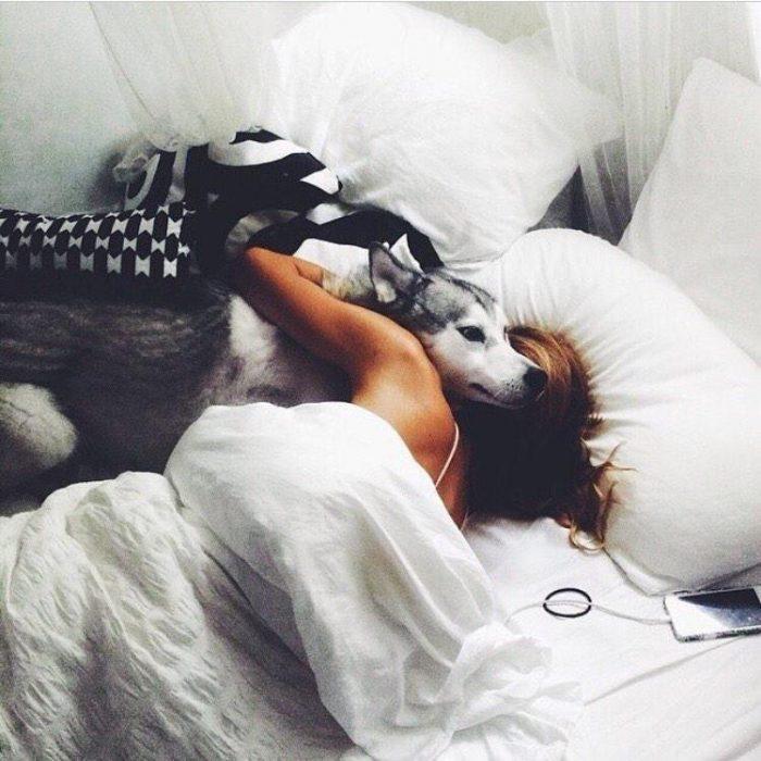 chica adormida con perro a un lado