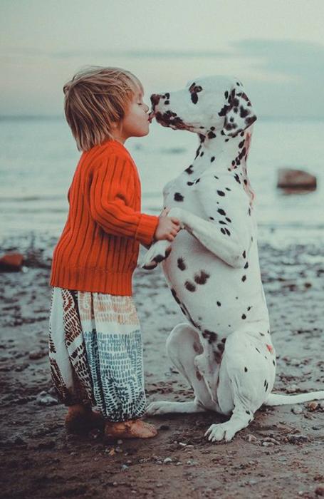 niña pequeña besando dálmata cachorro