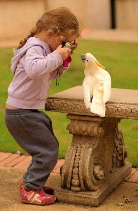 niña fotografiando un ave