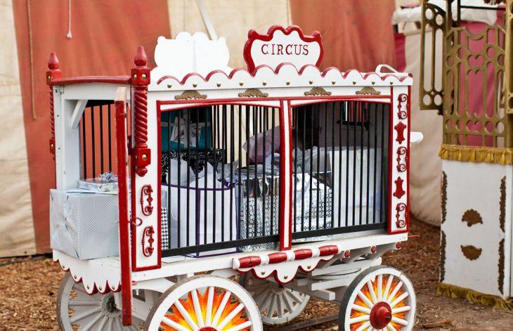jaula para regalos boda circo vintage