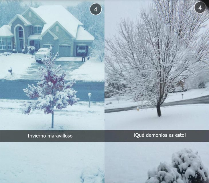 Two types of reactions during winter