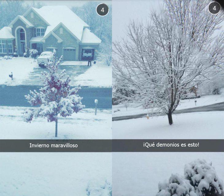 Hay dos tipos de reacciones durante el invierno