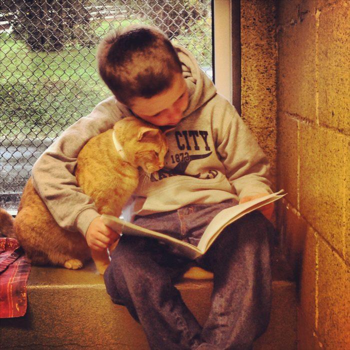 Niño lee cuentos para los animales del refugio