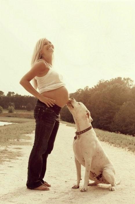 Sesión de fotos de maternidad perro besando la panza de su dueña mientras están en la playa