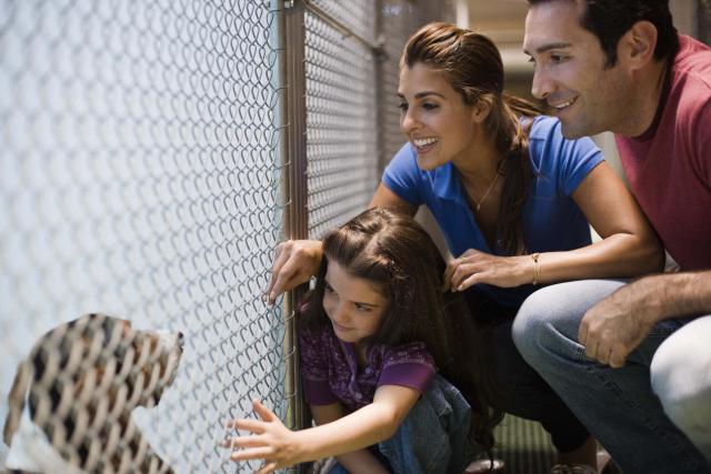 familia adoptando perro