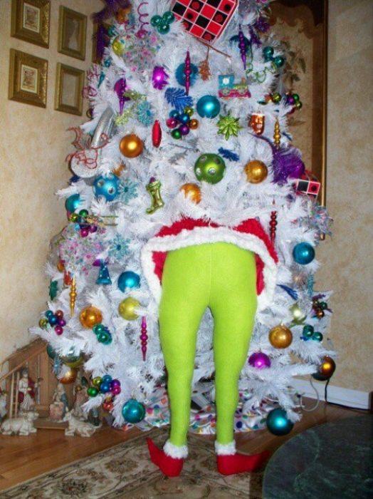 Grinch robándose un árbol de navidad