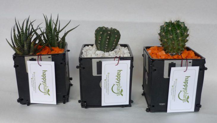 macetas con disquetes
