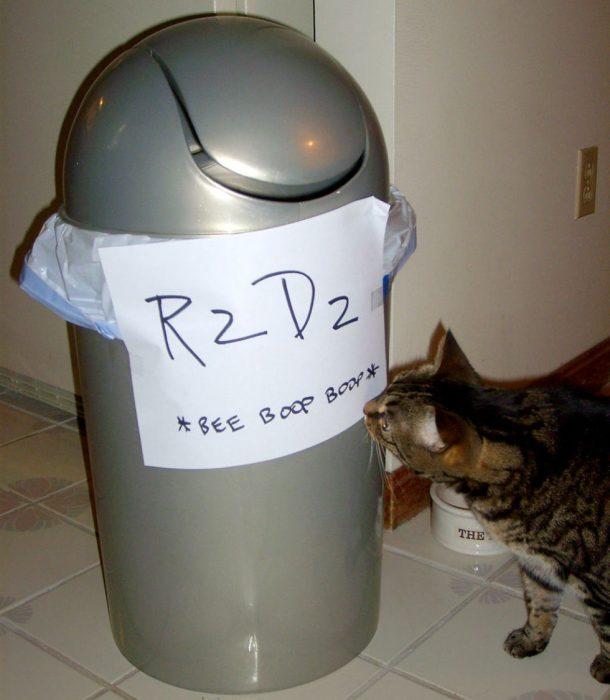 disfraz de bote de basura