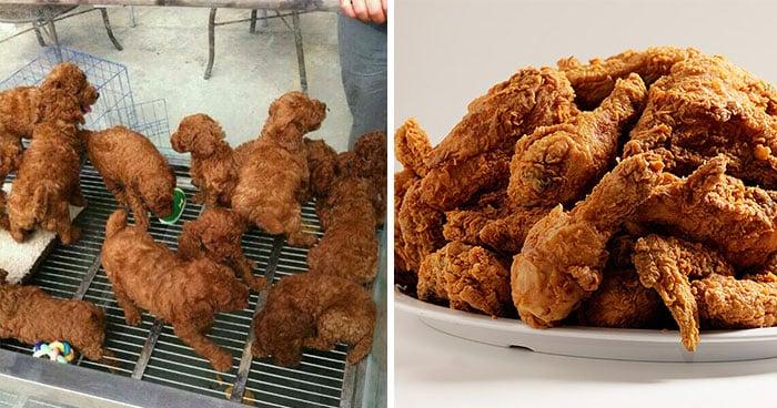 cosas que se parecen a otras, perritos que son iguales a unas piezas de pollo