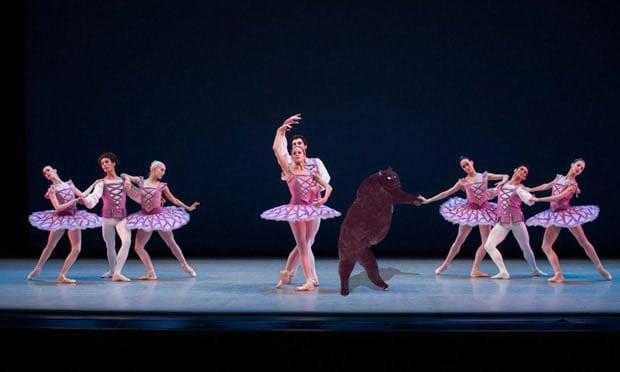 Gato bailando en una obra de ballet