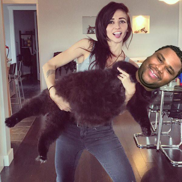 Chica sosteniendo a un gato con la cara de anthony anderson
