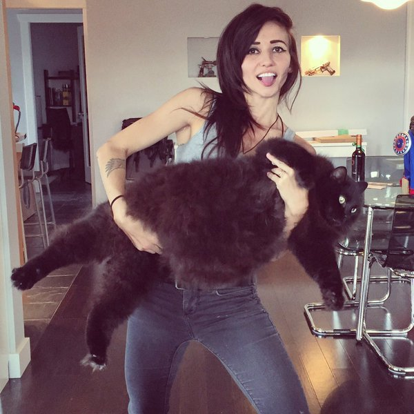 Chica sosteniendo a un gato obeso