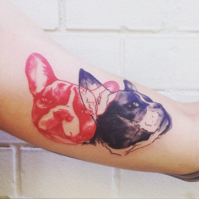 tatuaje de cabezas de bull dog frances en rojo y negro