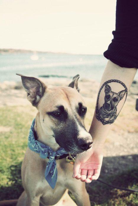 Tatuaje retrato de perro