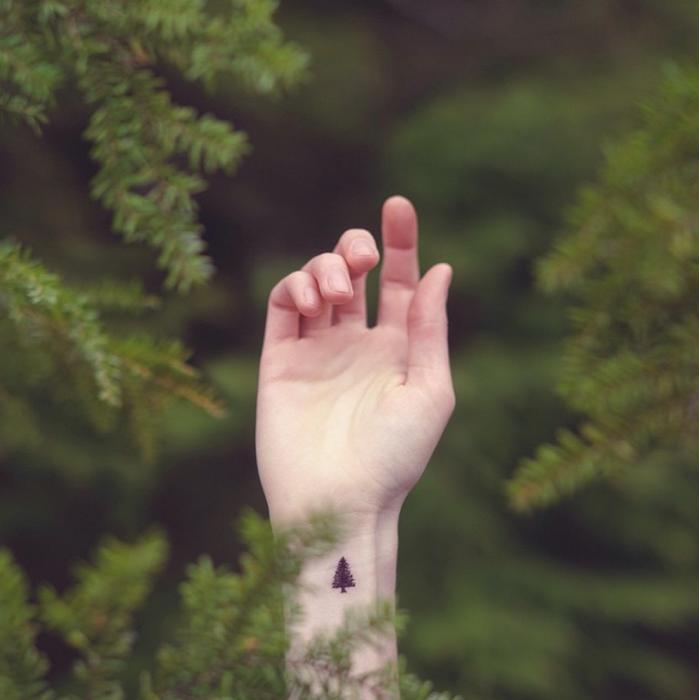 Tatuajes miniatura pino
