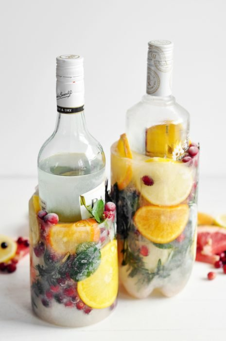 Recipientes para botellas de hielo y frutas