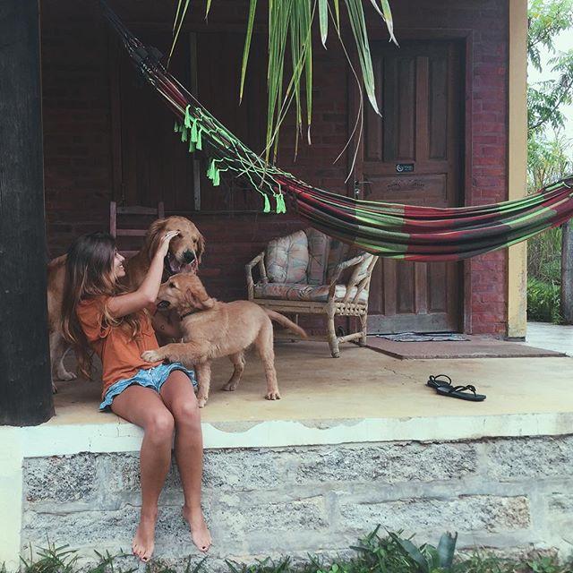 Chica alimentando a unos perros golden afuera de una casa