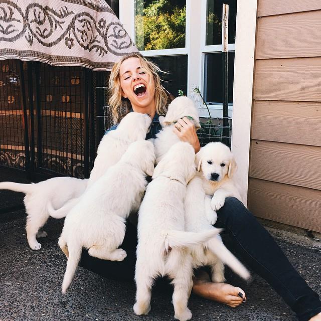 Chica rodeada de varios perros labrador