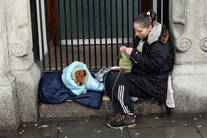 mujer de la calle cobija y tapa a un perro