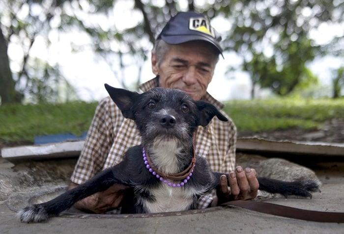 hombre rescata perro