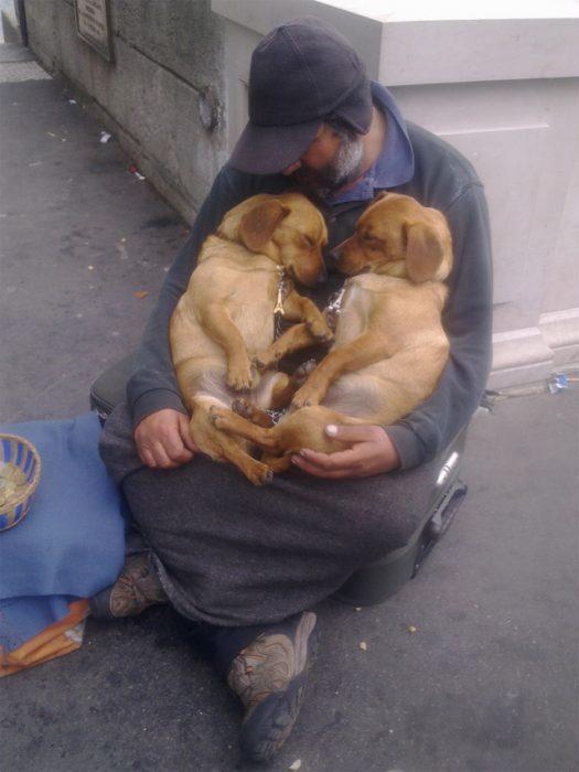 hombre de la calle carga a dos perros