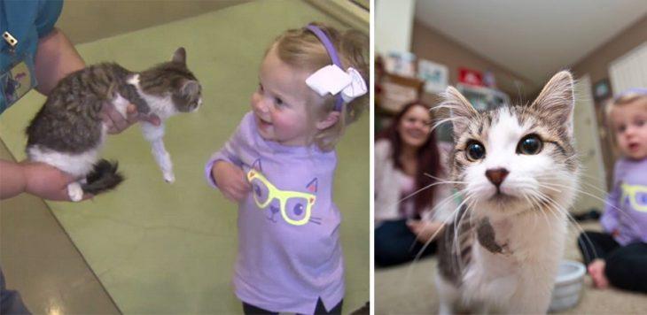 Niña y gatito ambos con un brazo amputado