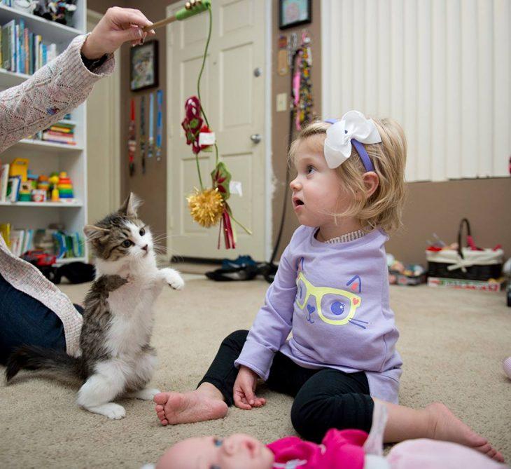 Niña jugando con un gato que tiene la pata amputada