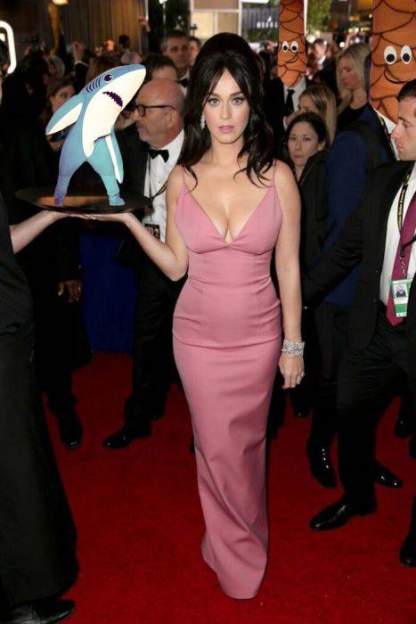 Katy Perry trolleada (9)