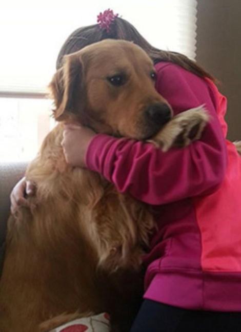 Perros asustados por el veterinario (17)
