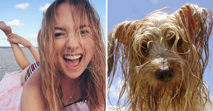 YouAreDog: La cuenta de Twitter que está enloqueciendo a los amantes de los perros
