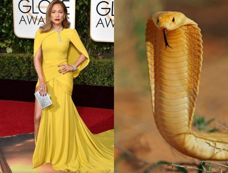 Jennifer Lopez comparada con una cobra amarilla
