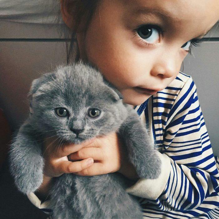 niña con gato gris curiosa