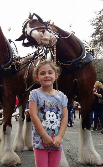 photobomb de caballo a niña