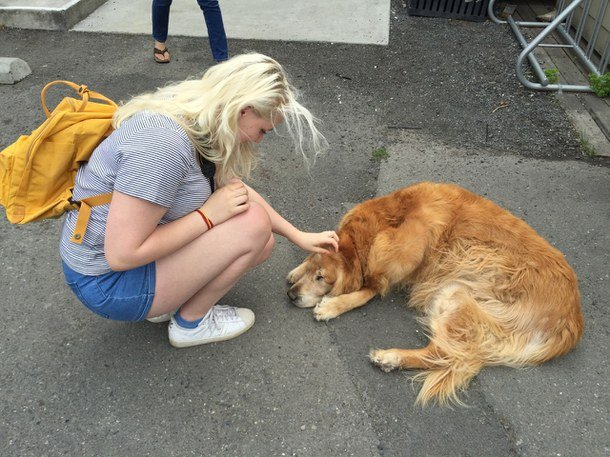 Chica acariciando a un perro recostado en la calle