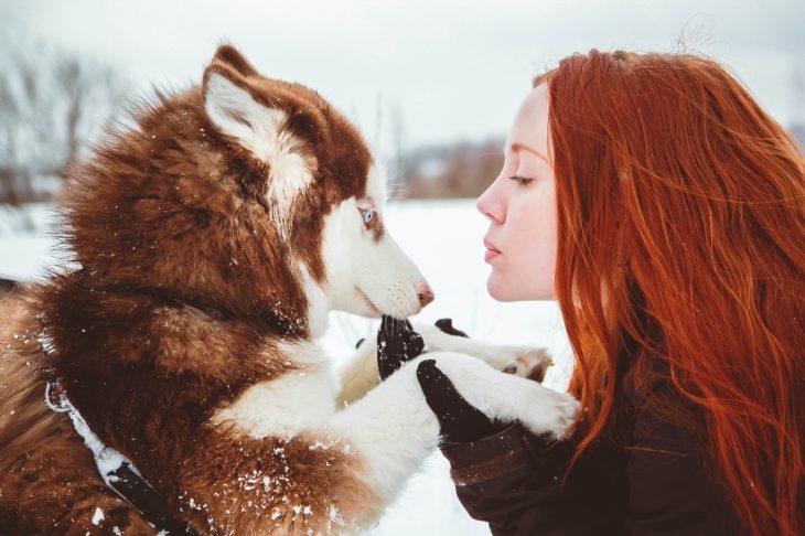 Chica sosteniendo de las patas a un perro husky mientras están en la nieve