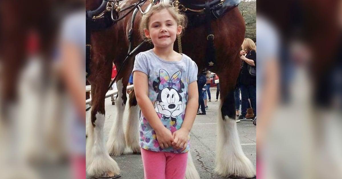 Enorme caballo posa con esta increíble sonrisa en la foto de una adorable niña
