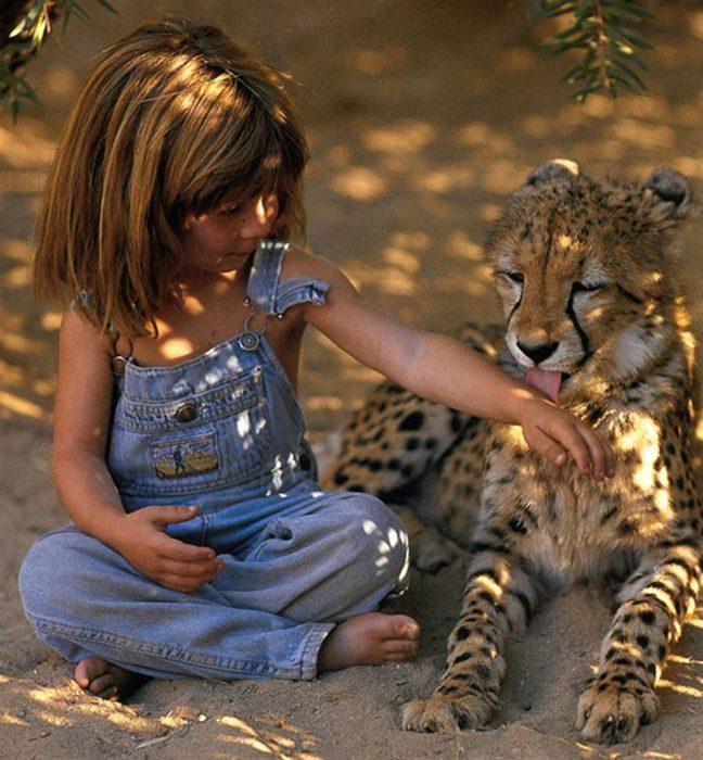 niña tippi sentada con cachorro leopardo lame su brazo