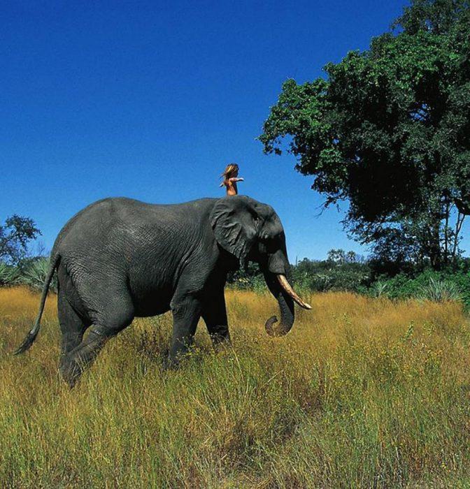 niña tippi en la selva arriba de amigo abu el elefante