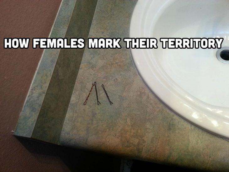 pasadores de cabello en el lavabo como mujeres marcan territorio