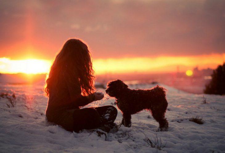 mujer sentada atardecer nieve perro comida