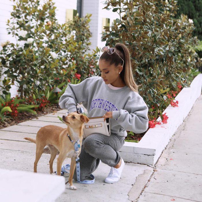 chica incada saca algo de su bolsa perro sueter arianna grande