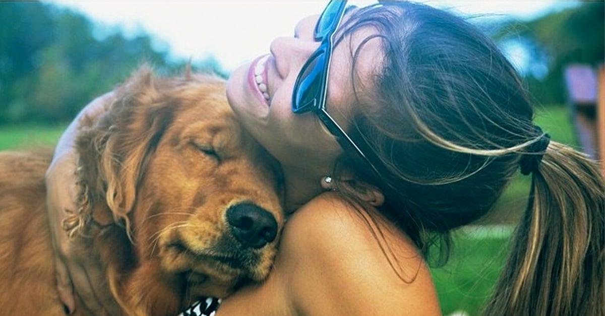 Si conoces a alguien que rescata perros, NO le digas estas 10 cosas