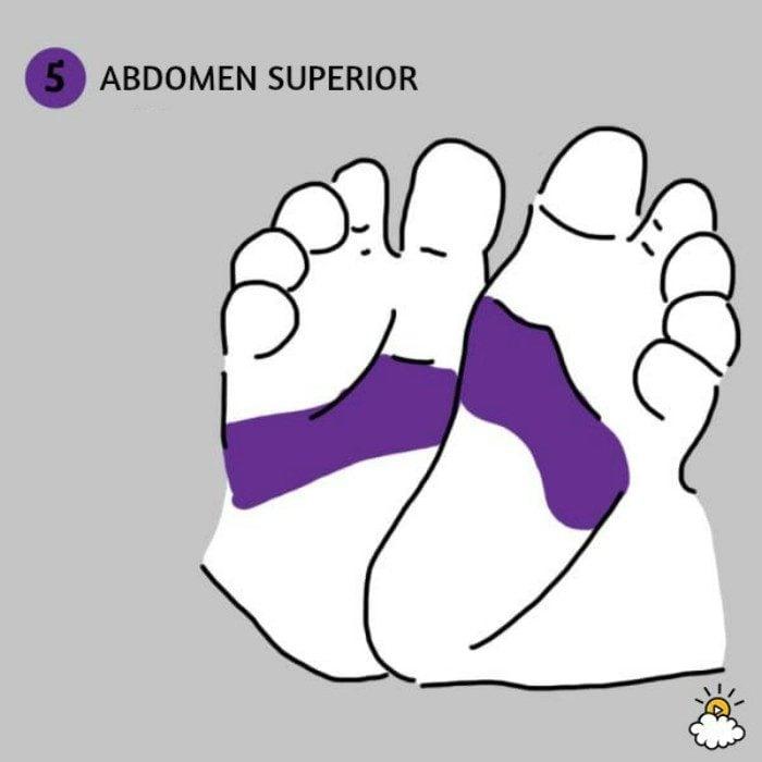 ilustración abdomen superior reflexiología de pies para salud de tu bebé