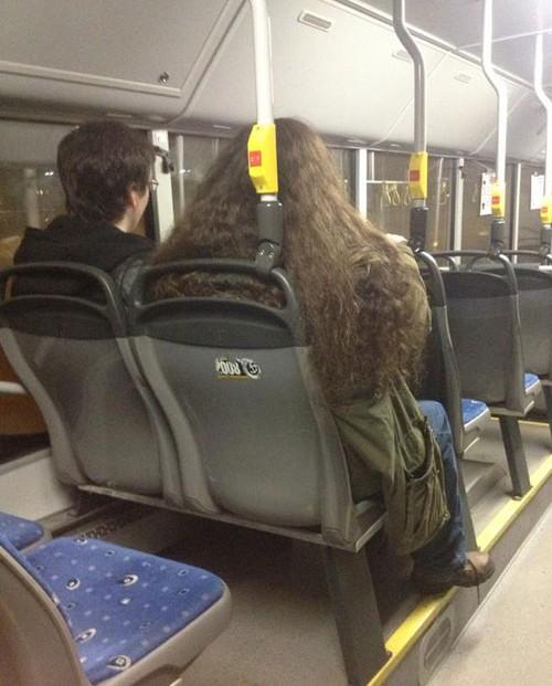 persona parecida a Harry y Hagrid