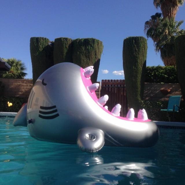 Inflable para la piscina en forma de tiburón