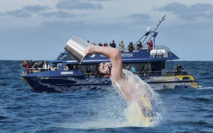 batalla photoshop en reddit hombre sensual echándose agua como si fuera ballena en avisamiento