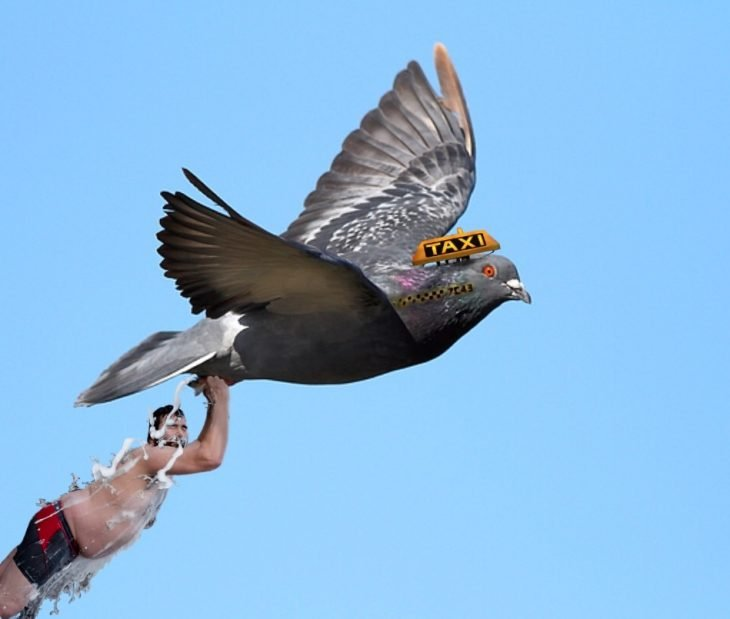 batalla photoshop en reddit hombre sensual echándose agua agarrado de patas de paloma volando