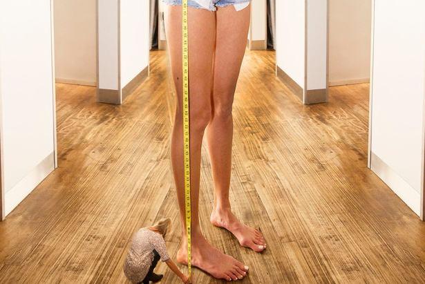 Batalla Reddit chica piernas largas